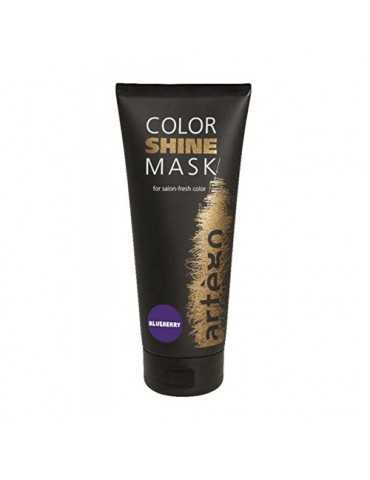 Color Shine Mask Blueberry...